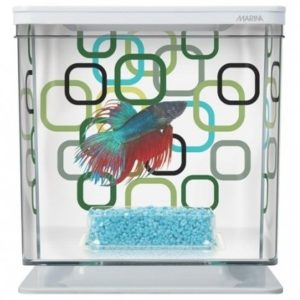marina-betta-kit-geo-bubles